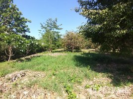 N/A Land for sale in Nam Phrae, Chiang Mai 1 Rai Land In Namphrae for Sale