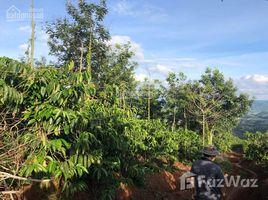Земельный участок, N/A на продажу в Dak Som, Dak Nong Bán đất KDL Tà Đùng view 180 độ
