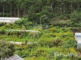 林同省 Ward 5 Bán đất xây khu biệt thự nghỉ dưỡng kết hợp homestay Làng hoa Vạn thành tp đà lạt N/A 土地 售