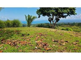 N/A Terreno (Parcela) en venta en , Puntarenas Vista Del Sueño Pavones, Pavones, Puntarenas