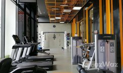 Photos 2 of the Communal Gym at The Line Sukhumvit 101