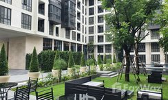 Photos 3 of the Communal Garden Area at The Reserve Sukhumvit 61