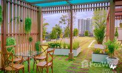 Photos 3 of the Communal Garden Area at City Garden Tropicana