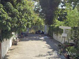 N/A Land for sale in San Phak Wan, Chiang Mai 250 Sqw Land for Sale in San Phak Wan