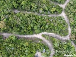 N/A Land for sale in Bo Phut, Koh Samui Land For Sale In Samui Island