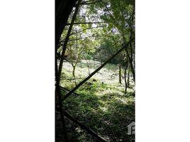 N/A Terreno (Parcela) en venta en , Guanacaste MAGIC BAMBOO HIDEAWAY: ONLY A FEW STEPS FROM THE LAKE, Tronadora, Guanacaste