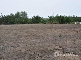 北柳 Bang Lao Bangpakong Riverside Land Plot For Sale 20 Rai N/A 土地 售
