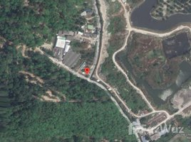 N/A Land for sale in Patong, Phuket Land For Sale In Patong 2 Rai