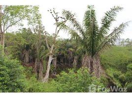 Santa Elena Manglaralto Majestic Ocean Views: Grand Opening-Vista Mar-Master Planned Community Nestled in the Jungle, Olón, Santa Elena N/A 土地 售