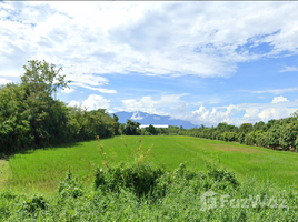 N/A Land for sale in Pa Bong, Chiang Mai 5-3-18 Rai Land in Saraphi