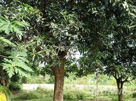 N/A Land for sale in Nhuan Trach, Hoa Binh Cần bán gấp 3600m2 đất hai mặt tiền đã có trong quy hoạch lên thị xã của Lương Sơn, Hòa Bình