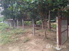 Kyaukse, မန္တလေးတိုင်းဒေသကြီး Land for sale in Za Yat Hpyu, Mandalay တွင် N/A အိမ်ခြံမြေ ရောင်းရန်အတွက်