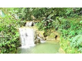 N/A Land for sale in , Puntarenas Rio Claro, Rio Claro, Puntarenas
