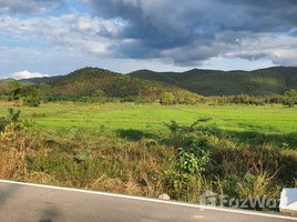 N/A Land for sale in Huai Sai, Chiang Mai Huge Land with Building in Huai Sai for Sale