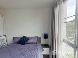 1 Bedroom Condo for sale in Chang Phueak, Chiang Mai D Vieng Santitham