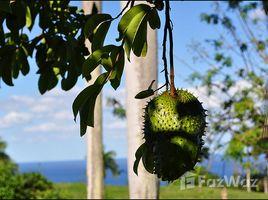недвижимость, N/A на продажу в , Maria Trinidad Sanchez Hillside Land with Sea and National Park View in Trinidad Sanchez
