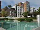 1 Bedroom Condo for rent at in Mae Hia, Chiang Mai - U85423