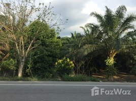 拉农 Bang Phra Nuea Land 3 Rai 3 Ngan for Sale in Ranong N/A 土地 售