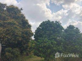 Kampong Speu Traeng Trayueng Other-KH-74618 N/A 土地 售
