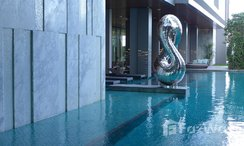 Photos 2 of the Communal Pool at The Room Sukhumvit 69