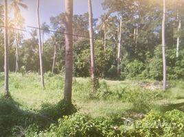 N/A Land for sale in Na Mueang, Koh Samui 1 RAI Land Plot For Sale In Laem Sor