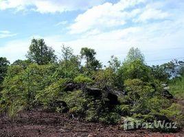 N/A Land for sale in Hat Lek, Trat Land in Trat near Beach for Sale 14 Rai