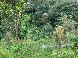 Cartago Se vende casa con apartamento en San Rafael, Montes de Oca.: Countryside House For Sale in San José, San José, San José 3 卧室 屋 售