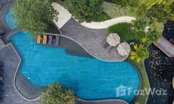 Photos 1 of the Communal Pool at Park Court Sukhumvit 77