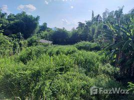 清迈 Huai Sai Nice Land for Sale in Mae Rim N/A 土地 售