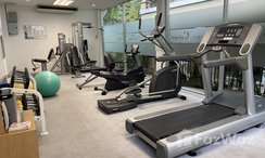 Photos 1 of the Communal Gym at The Cadogan Private Residences
