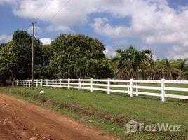 N/A Terreno (Parcela) en venta en , Alajuela San Mateo, Alajuela, Address available on request