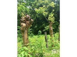 N/A Terreno (Parcela) en venta en , Guanacaste RIO CAÑAS : Riverside property - REDUCED PRICE !, Libano, Guanacaste