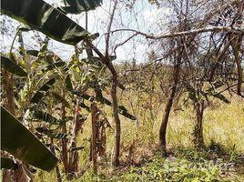 Panama Oeste El Higo THIS LOT IS LOCATED IN LAS LOMAS DE PLAYA CORONA IN SAN CARLOS, San Carlos, Panamá Oeste N/A 土地 售
