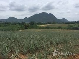 N/A Property for sale in Nong Phlap, Hua Hin 30 Rai Land for Sale in Nong Phlap, Huahin