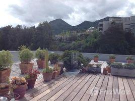 4 Bedrooms Apartment for rent in Santiago, Santiago Vitacura
