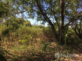 N/A Property for sale in Tha Li, Loei Land For Sale 36-1-36