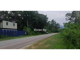 Pahang Bentong Bentong N/A 土地 售