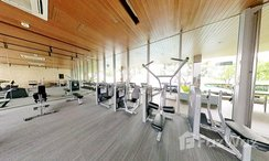 Photos 1 of the Communal Gym at The Lofts Ekkamai