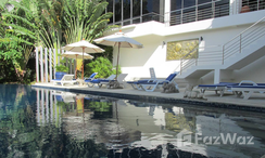 Photos 2 of the Communal Pool at Palm & Pine At Karon Hill