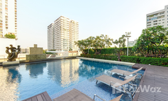 Photos 2 of the Communal Pool at Ivy Thonglor