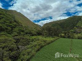 N/A Terreno (Parcela) en venta en Vilcabamba (Victoria), Loja riverfront hectare with eucalyptus, Quinará - Vilcabamba, Loja