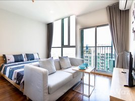 1 Bedroom Property for rent in Huai Khwang, Bangkok Noble Revolve Ratchada 2