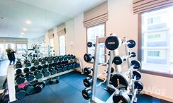 Photos 2 of the Communal Gym at Arcadia Beach Continental