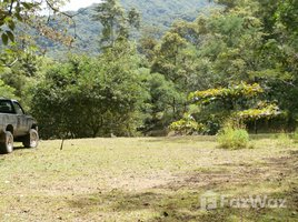 San Jose 11,460 SQM Land for Sale in Mora N/A 房产 售