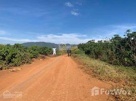 林同省 N'Thol Ha Bán đất xã N Thôn Hạ Huyện Đức Trọng 2.656m2 giá 1,3 tỷ N/A 土地 售