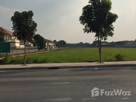 巴吞他尼 Bueng Kham Phroi 36 Rai Land in Lum Luk Ka for Sale N/A 房产 售