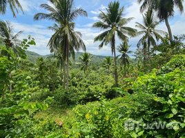 N/A Land for sale in Taling Ngam, Koh Samui Land with Sea View for Sale in Taling Ngam