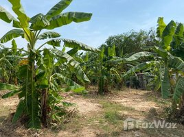 N/A Land for sale in Sattahip, Pattaya 379 Sqw Land in Sattahip for Sale
