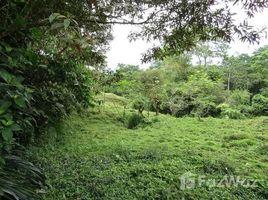 Limon Finca en Santa Marta de Siquirres: Mountain and Countryside Agricultural Land For Sale in Siquirres, Siquirres, Limón N/A 土地 售