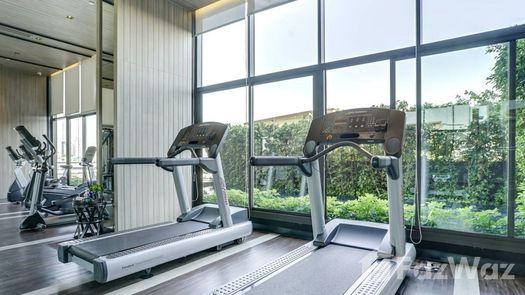 3D Walkthrough of the Communal Gym at The Line Sukhumvit 71